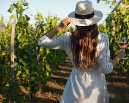wijnadvies macedonische wijn